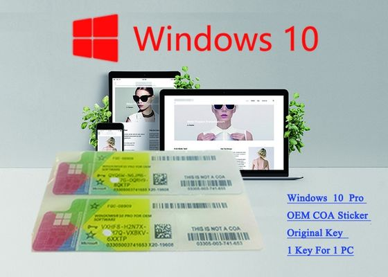 China Win 10 Pro French USB 3.0 Pack Windows 10 Product Key FQC -08920 Verified OEM Key supplier