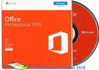 China Original Office 2016 Professional FPP , Microsoft Office Professional Plus 2016 DVD factory