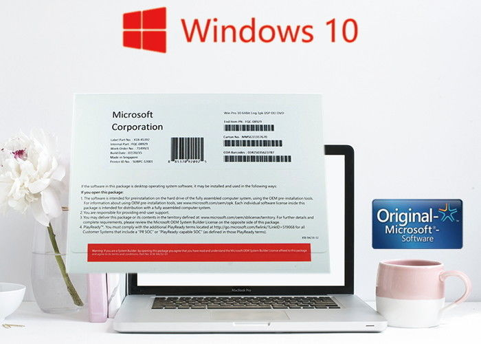 what is windows 10 professional oem