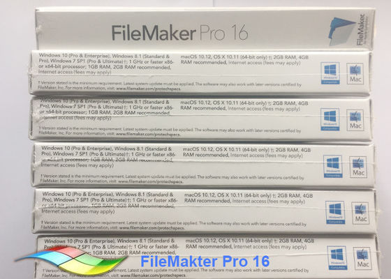 China Software FileMaker Pro 16 Upg FPP Package 100% Original Filemaker Pro Windows factory